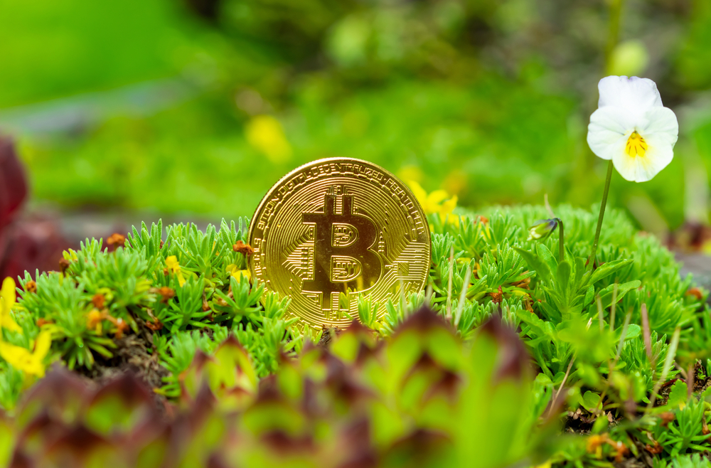 Green Cryptocurrency